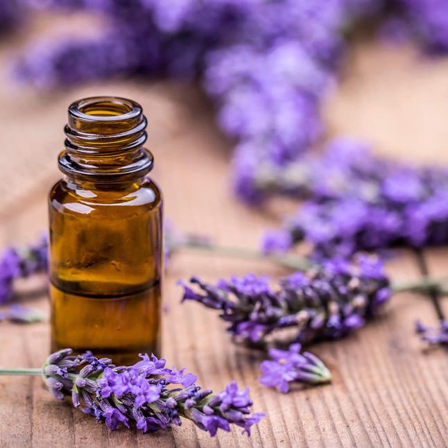 oil lavender